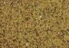 Люцерна. Семена люцерны.